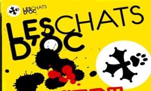 0-Chats-d-oc-500x300